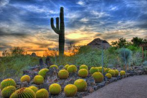 Find your home for sale in Cobblestone Community Maricopa